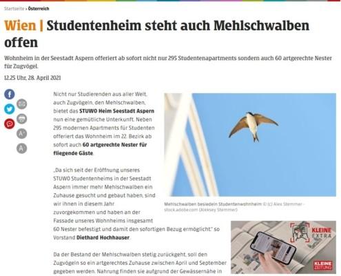 STUWO Studentenheim steht auch Mehlschwalben offen